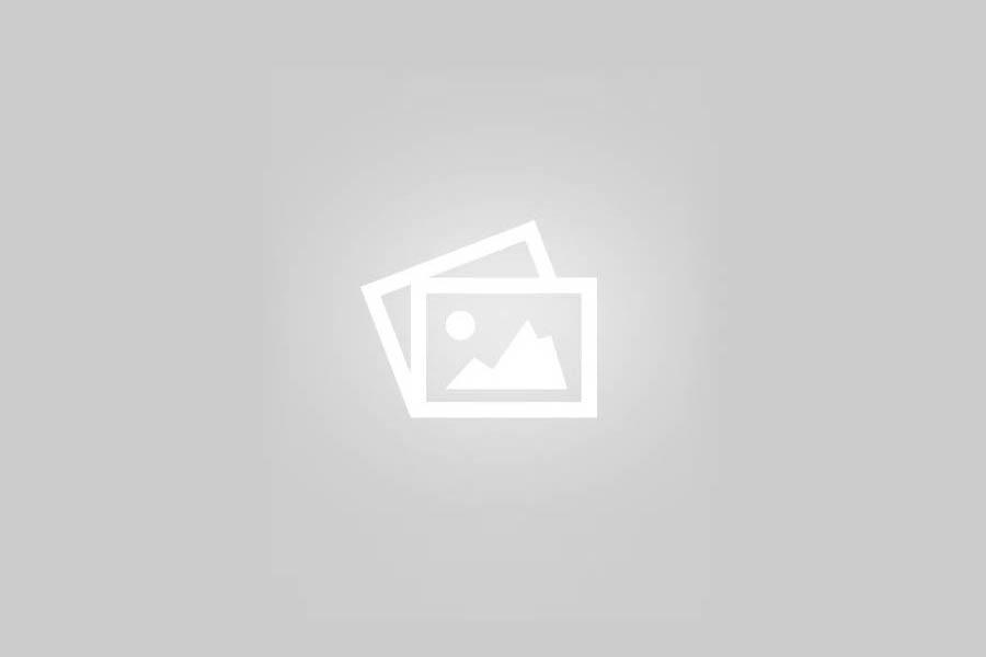 Latest MLA Handbook 2020 Version – FREE PDFDownload